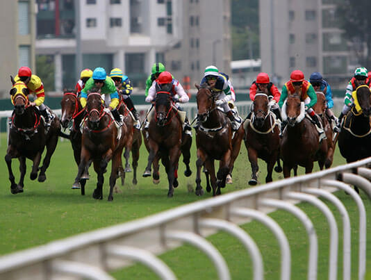 HORSE RACING<br> SELECTIONS